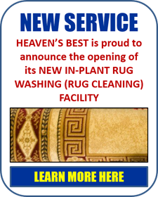 Heavens_Best_VA_Special_Offers_Events_Banner_Rug_Washing_01_225x275