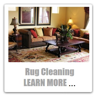 Heaven's Best Oriental & Area Rug Cleaning